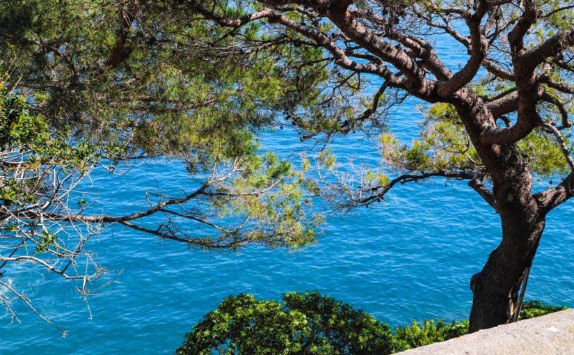 Pourquoi partir en vacance vers la Côte d'Azur ?